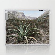 Mexico Century Laptop & iPad Skin