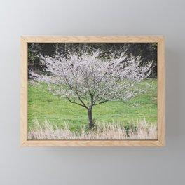 Blooming Family Tree Framed Mini Art Print
