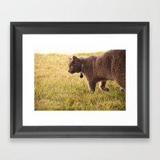 Surveying His Own Framed Art Print