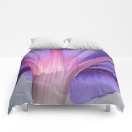 Macro of a Pale Liliac and Pink Morning Glory Comforters