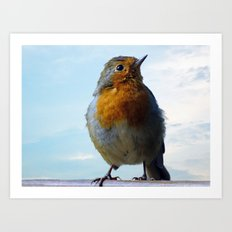Fluffy Robin Redbreast Art Print