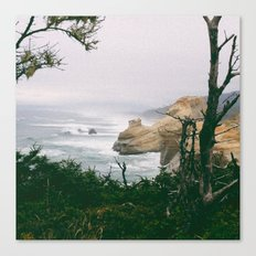 Looking North Canvas Print