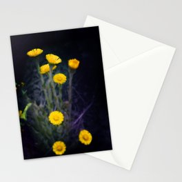 Meadow of the Sun Stationery Cards