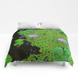 Lily Pond Comforters