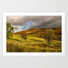 Gowbarrow Fell, Lake District Art Print