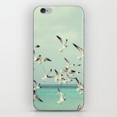 Seagulls in Flight iPhone & iPod Skin