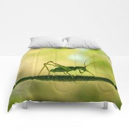 cricket in green  Comforters