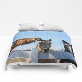 Laugh Comforters