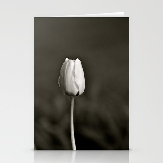 Colorless Beauty Stationery Cards
