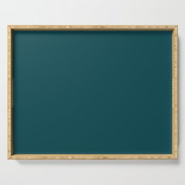Dark Turquoise Pairs to Benjamin Moore Tucson Teal 2056-10 Serving Tray