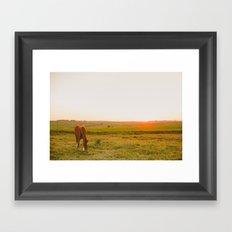 Summer landscape Framed Art Print
