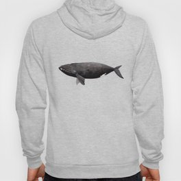 Northern right whale (Eubalaena glacialis) Hoody