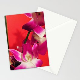 Orchid Stationery Cards