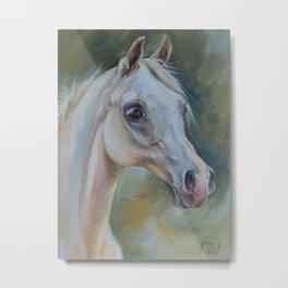 Gray Arabian Horse portrait Arab Horse head oil painting Metal Print