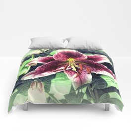 Pink Lily Flower Cottage Chic Modern Country Home Decor A419A Comforters