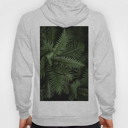 Tropical leaves 02 Hoody