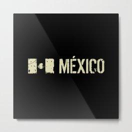 Mexican Flag: Mexico Metal Print