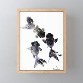Black Moor, Feng Shui Koi Fish Art, Three Fish black fish decor Framed Mini Art Print