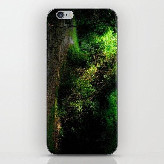 A Lost Alley Way iPhone & iPod Skin