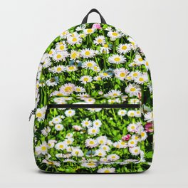 Field of daisy flowers Backpack