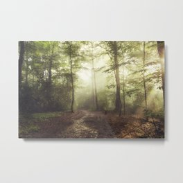 german rain forest Metal Print