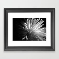 {beauty in darkness} Framed Art Print