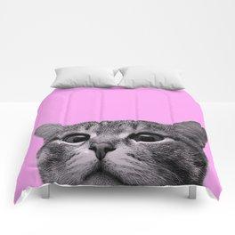 Curious Cat Comforters