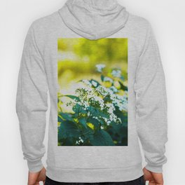 Fall Wild Flowers Hoody