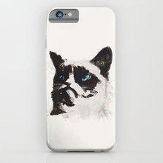 Cat that's Grumpy iPhone 6s Slim Case
