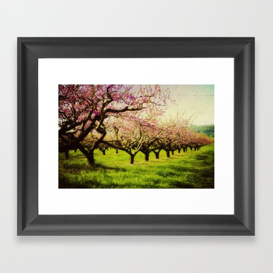 Orchard play Framed Art Print
