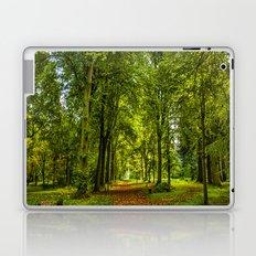 Woodland Pathway Laptop & iPad Skin