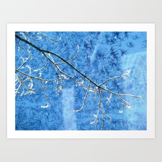 Winter Blue(s) Art Print