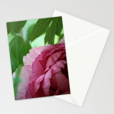 Sweet Stationery Cards