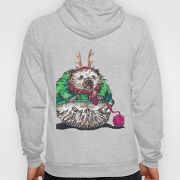 Holiday Sweater Crochet Critter Hoody