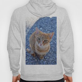 give me a little love Hoody