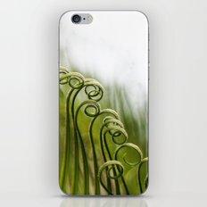 Curly iPhone & iPod Skin