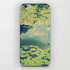 Lily Pad Pond iPhone & iPod Skin