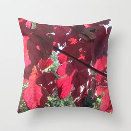 Vivid Red Leaves in Autumn Throw Pillow