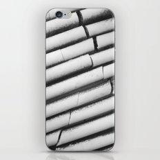 Ice. Ribs / 2012 iPhone & iPod Skin