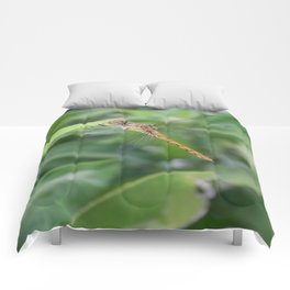 Green and Brown Dragonfly Holding On To Oleander Comforters