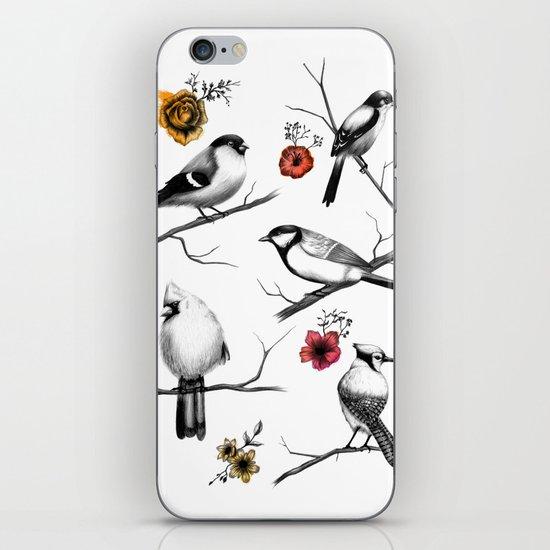 BIRDS & FLOWERS iPhone & iPod Skin