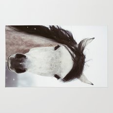 Winter Horse Rug