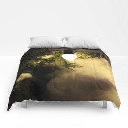Light and Snow Comforters