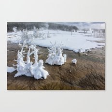 Winter in Yellowstone Canvas Print