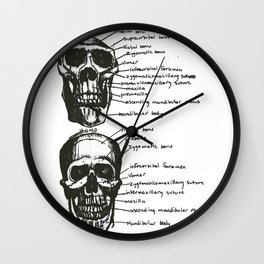 Skulls: Pan vs. Homo Wall Clock