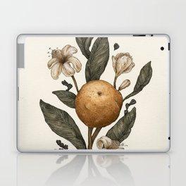 Clementine Laptop & iPad Skin