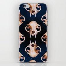 Felidae iPhone & iPod Skin