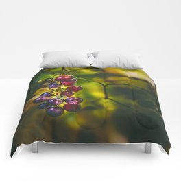 Pinot II Comforters