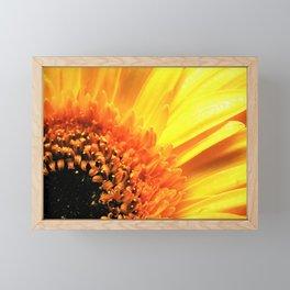 Gerber Framed Mini Art Print