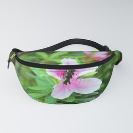 Nectar Sipping Butterfly Fanny Pack